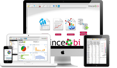 Lince Bi. Business Intelligence in the cloud